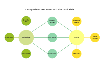 Comparison Between Whales and Fish