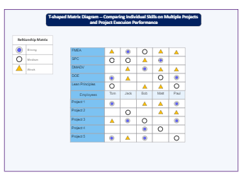 T-Shaped Matrix for Projects