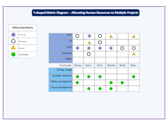 T-Shaped Matrix Diagram for  Human Resources