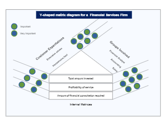 Y-Shaped Matrix for Financial Firm