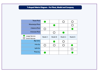 T- Shaped Matrix for Companies