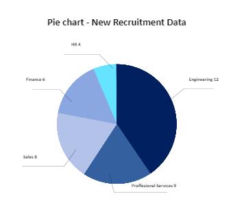New Recruitment Data Pie Chart