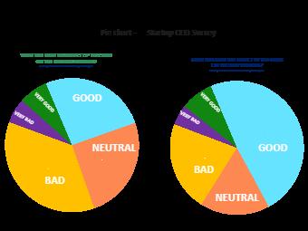Startup CEO Survey Pie Chart
