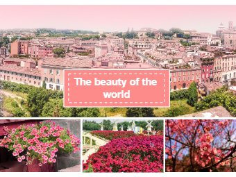 Flower Scenery Photo Collage