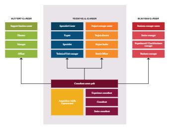 Technical Career Path